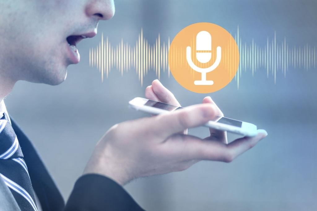 Voice recognition Program
