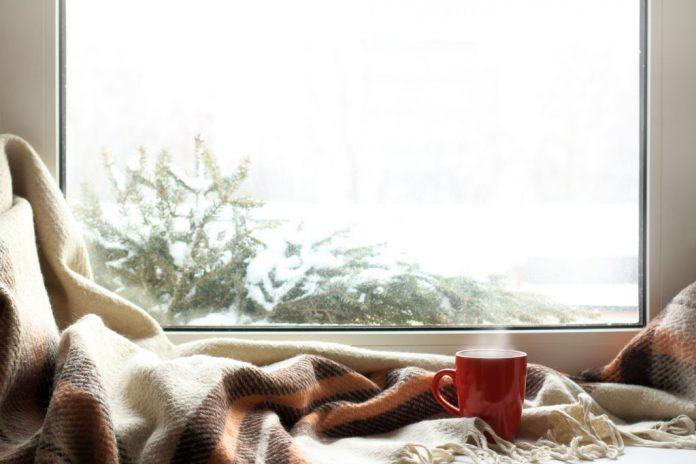 Best Winter Break Ever